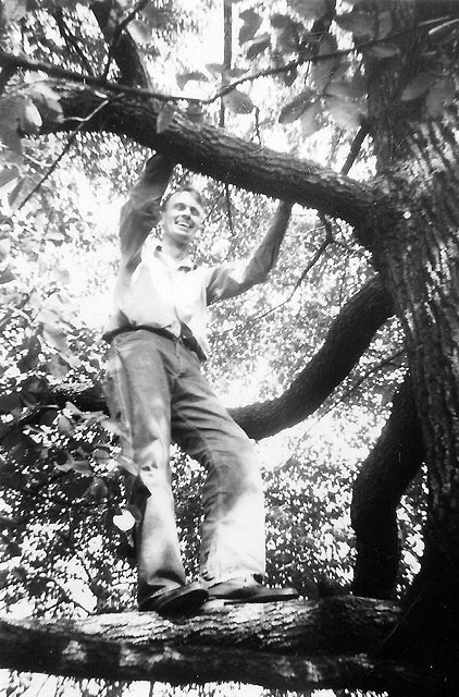 Francis Clauser preparing to build the most beautiful home in Maryland's Green Spring Valley, around this giant gum tree.